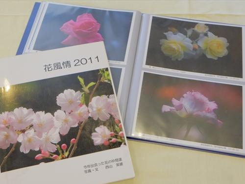 タペンス12花写真集