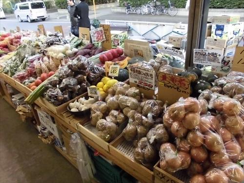 写真10野菜1