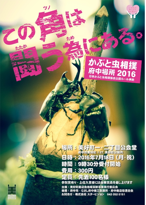 写真5カブト虫相撲2016 (3)